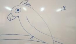 Σχεδιάζοντας έναν παπαγάλο σε 12 βήματα